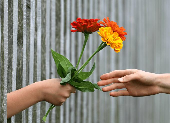 fleur-min